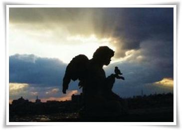 平和の象徴となったオリーブ